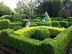 landscaping with boxwood hedges
