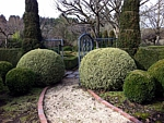 landscaped path with boxwood topiary